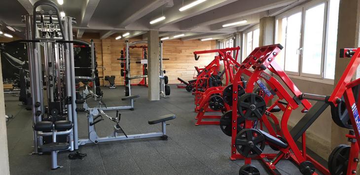 Musculaci n gimnasio urtzi for Gimnasio musculacion